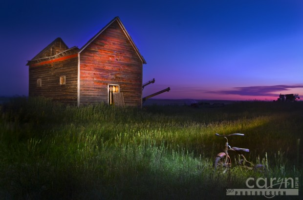 Caryn Esplin - Roofless Barn - Light Painting