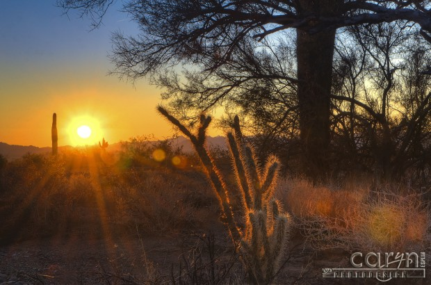 Caryn Esplin - Sunrise Flare - Quartzsite, Arizona