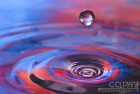 Floating Water Drop - Macro Water Splash - Caryn Esplin