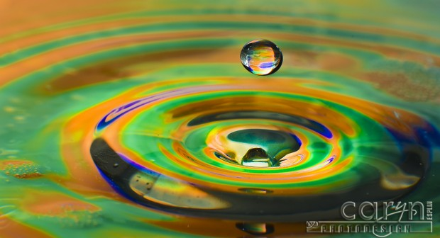 Orange Floater - Water Drop Photography - Caryn Esplin