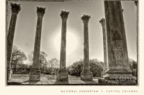 US Capitol Columns at the National Arboretum