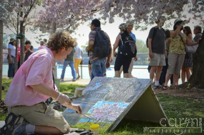 Cherry Blossoms - Artist in the Park - Washington D.C. - Caryn Esplin