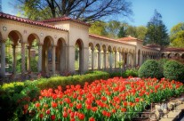 National Franciscan Monastery – Beautiful Grounds