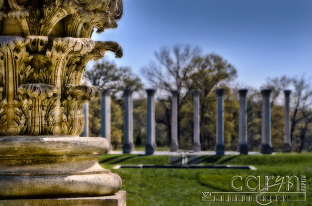 US Capitol Column View - National Arboretum - Caryn Esplin