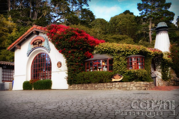 Flowering Vines - Carmel Highlands General Store - Carmel, CA - Hwy 1 - San Francisco Bay Area - Caryn Esplin