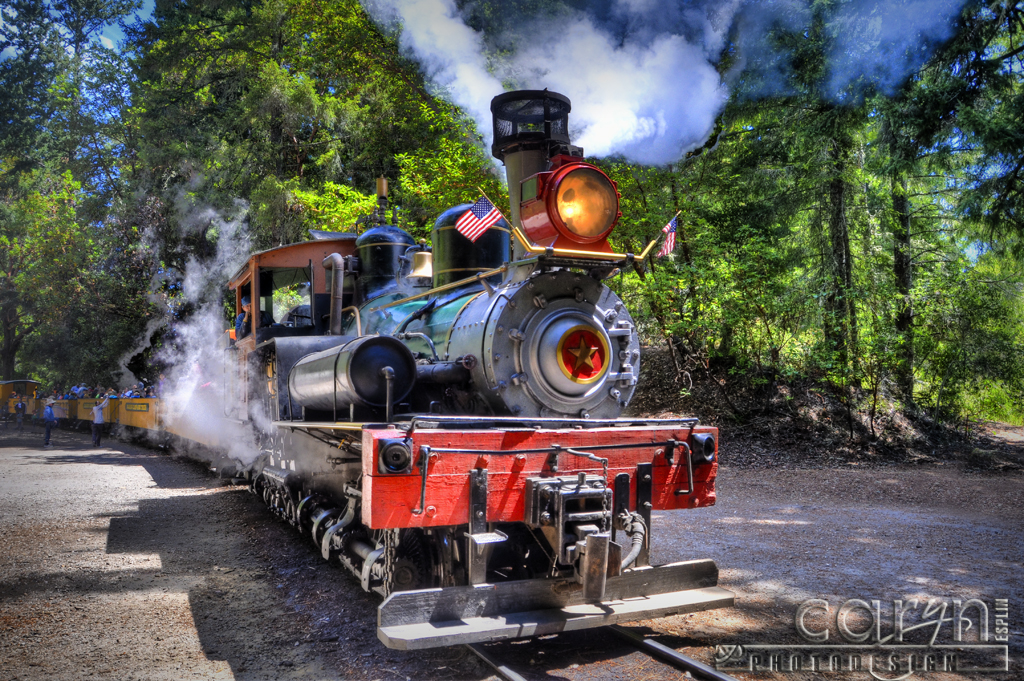 The Roaring Camp historic train, to be exact! Brightly adorned with lights of every color, our train will roll through the streets of Santa Cruz while passengers sing .