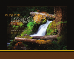 Custom Images: Photoshop Tips & Tricks - Caryn Esplin