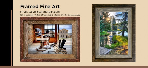 Framed Fine Art Photographic Prints - Photography - Caryn Esplin
