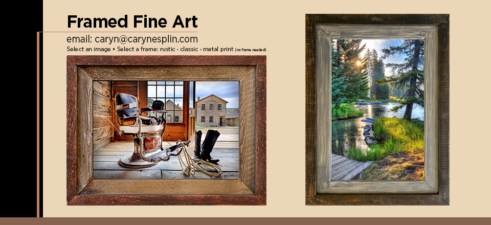 Fine Art Prints for home or office