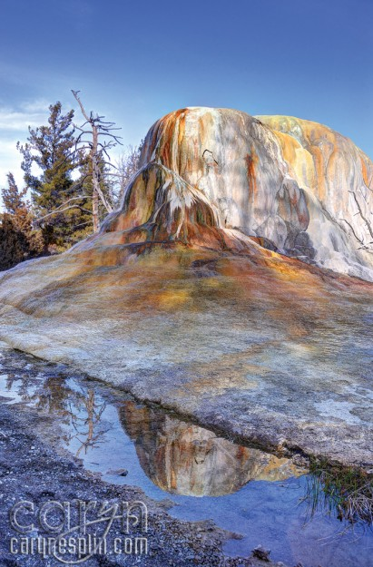CarynEsplin-MammothHotSprings-YellowstoneNationalPark