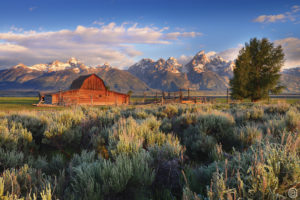 CarynEsplin - Copyright - Jackson Hole WY -Composite Option 09