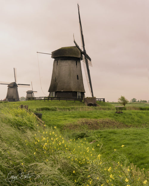 Dutch Windmills - Holland - Netherlands - Caryn Esplin - Sunrise